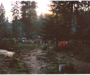 tent, camping, and forest image