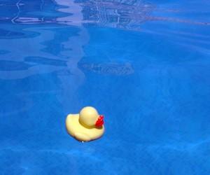 fun, summer, and swim image