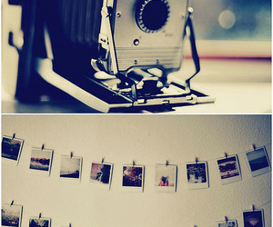 polaroid, vintage, and photography image