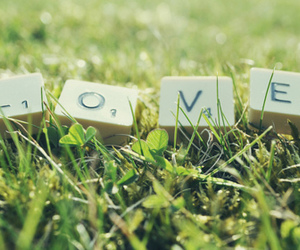 love, grass, and cute image