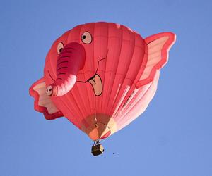 balloon, balloons, and fun image
