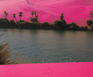 pink, desert, and sand image