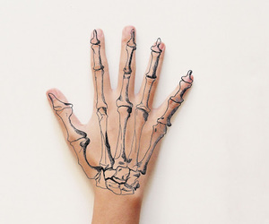 beautiful, bones, and cool image