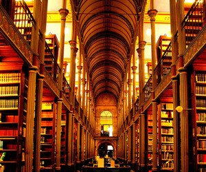 library, books, and copenhagen image