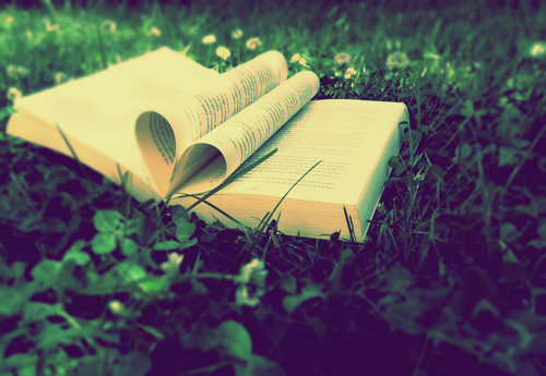 book and grass image