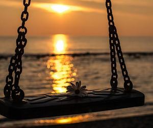 sunset, flowers, and swing image