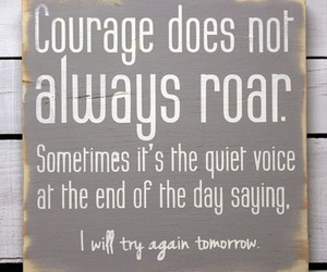 courage, quote, and roar image