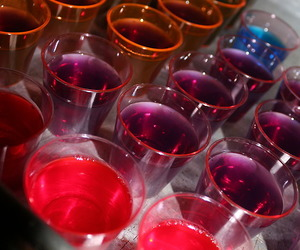 colorful, jello, and party image