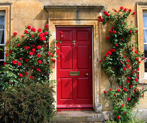 red, flowers, and door image