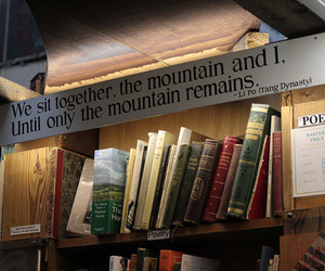 books, library, and hipster image