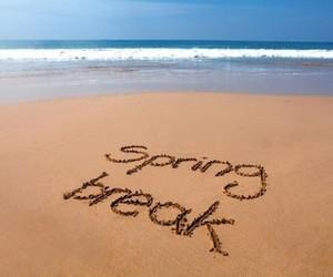 beach and spring break image