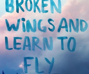 fly, wings, and quote image