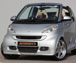 smart body kit, smart w451 body kit, and smart body panels image