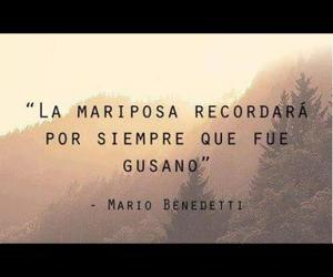 frases, mariposa, and mario benedetti image