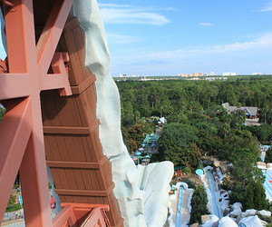 disney, water park, and followback image