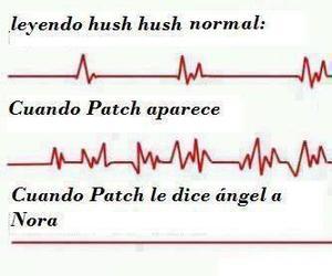 hush hush image