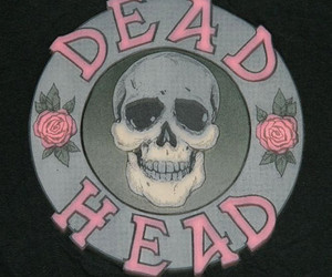 dead, pink, and rose image