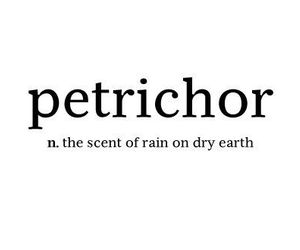 rain, petrichor, and text image