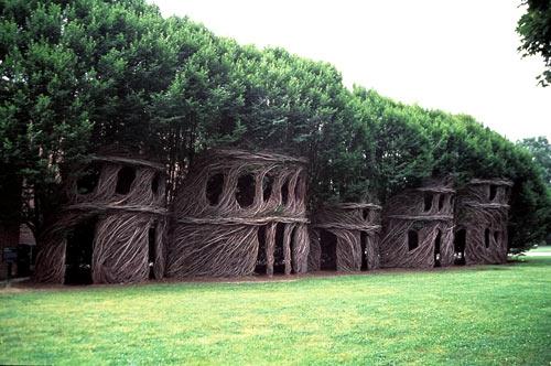 tree and tree house image