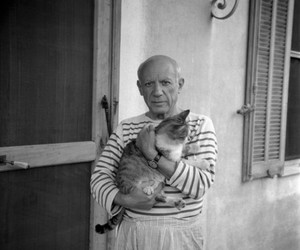cat, picasso, and artist image