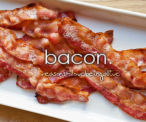 bacon, food, and reasons image