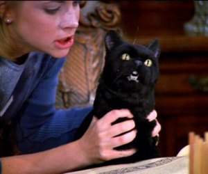 salem, cat, and sabrina image