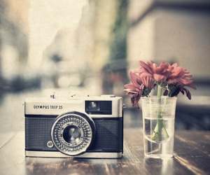flowers, camera, and photography image