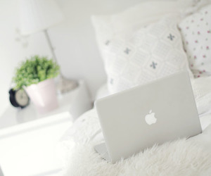 apple, floral, and nice image
