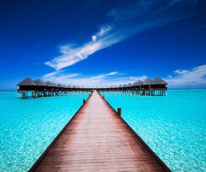 blue, paradise, and beach image