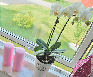 candles, flower, and home image