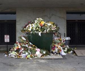 flowers, garbage, and grunge image