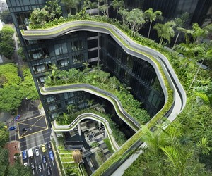 green, plants, and architecture image