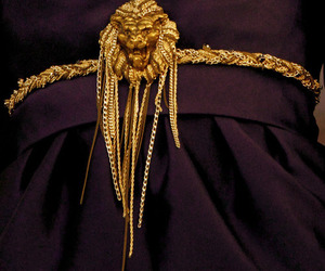 fashion, gold, and lion image