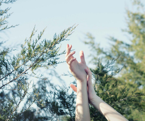 hands, nature, and tree image