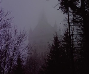 castle, foggy, and forest image