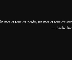 french, quote, and andre breton image