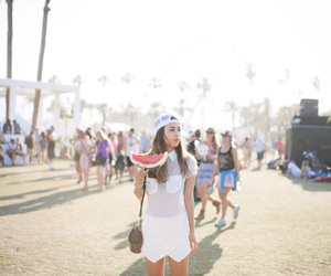 blogger, coachella, and life image