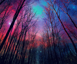forest, space, and galaxy image