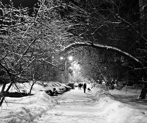 black and white, street, and winter image