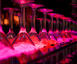 alcohol, bar, and bartender image