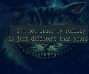 cat, different, and crazy image