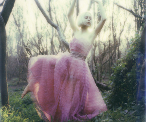 ballerina, pixie, and sx70 image