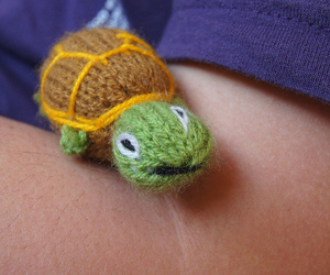turtle and wool image