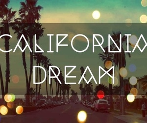 california, Dream, and palms image