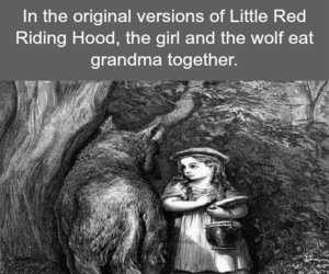 wolf, fact, and weird image
