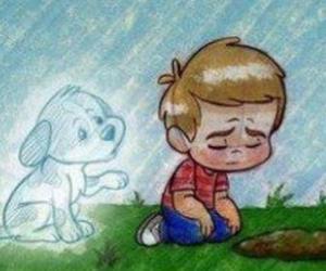 dog and sad image