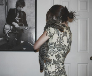 bob dylan, cat, and cute image