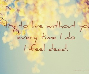 Lyrics, over and over, and three days grace image