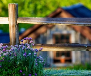 country living, farmhouse, and fence image