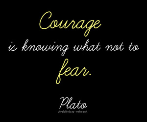 courage, fear, and plato image